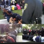 UC Davis Pepper Spray Incident, Four Perspectives